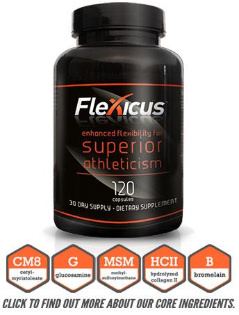 flexicus_bot2
